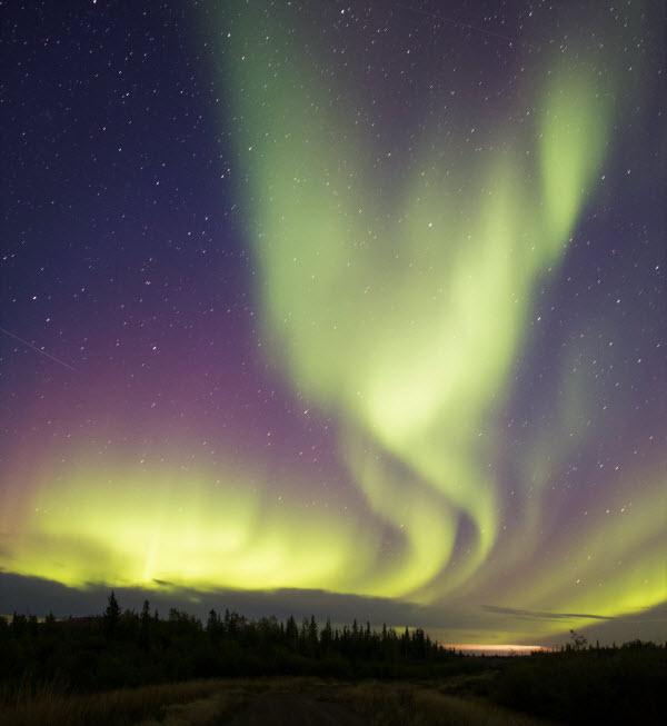 Aurora Borealis Specialty