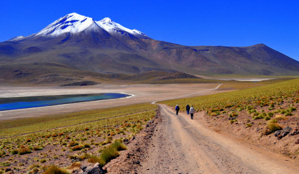 Forward Travel - Beautiful Atacama Desert