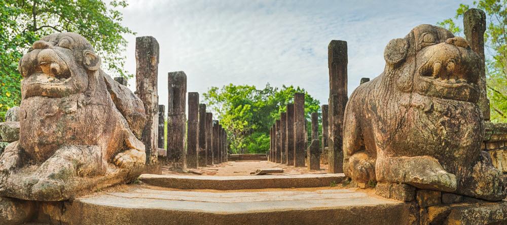 Forward Travel - Sri Lanka