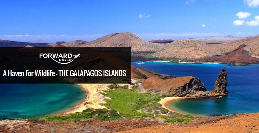 The Galapos Island