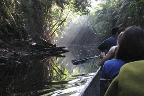 Forward Travel - Amazon Ecuador