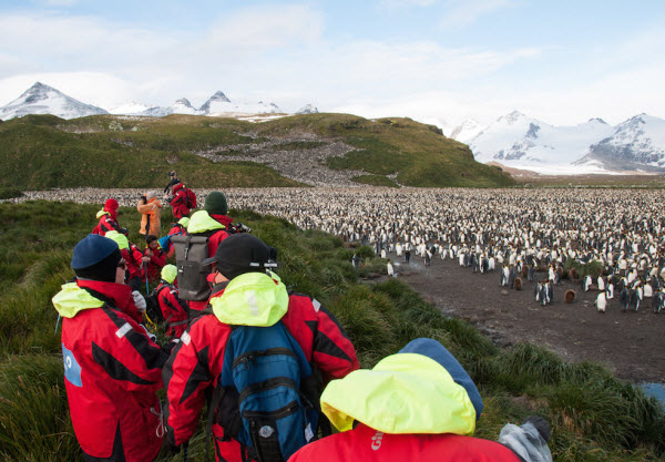 Forward Travel - Antarctica Full Summer season