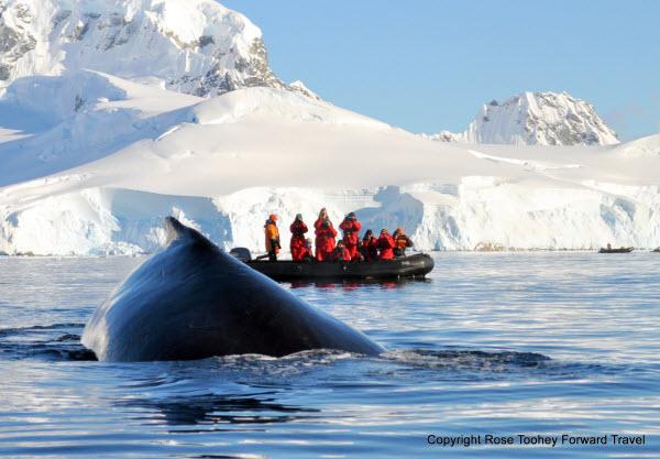 Forward Travel - Antarctica Late Summer season