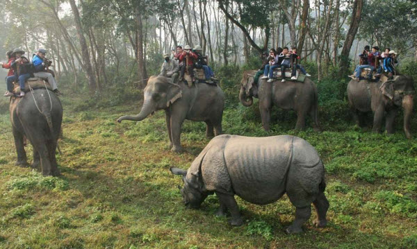 Forward Travel - Chitwan National Park Nepal