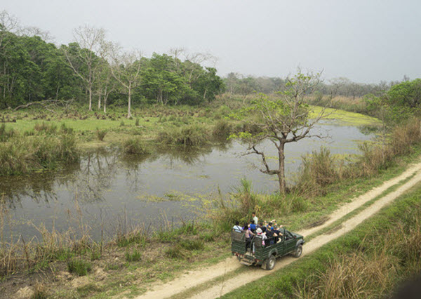 Forward Travel - Climate of Chitwan