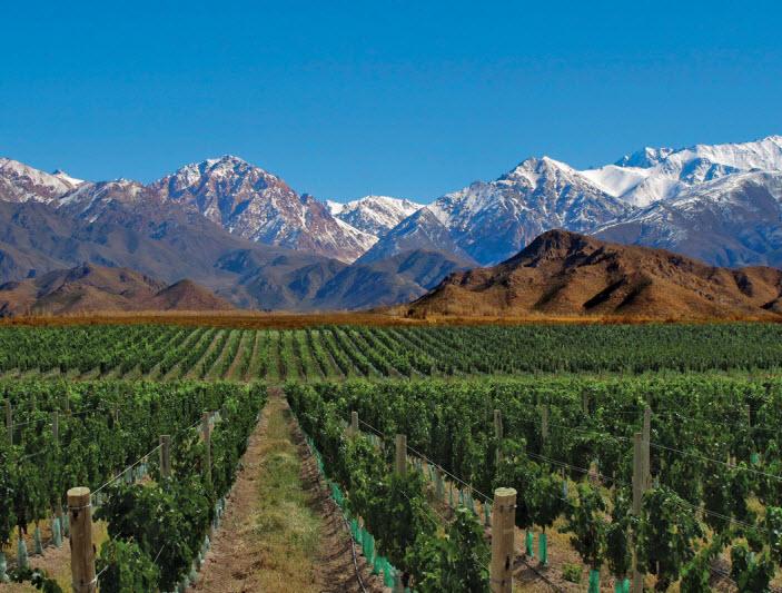 Mendoza the wine capital of Argentina