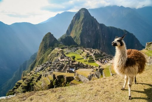 11 day Peru Discovery