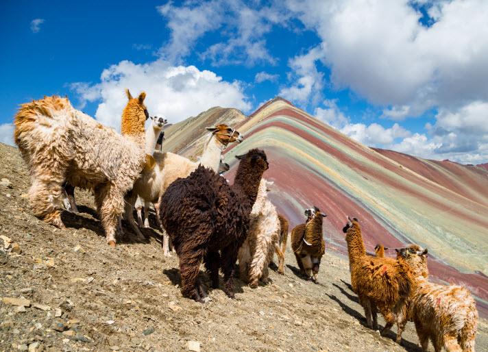 Travel visa for Peru