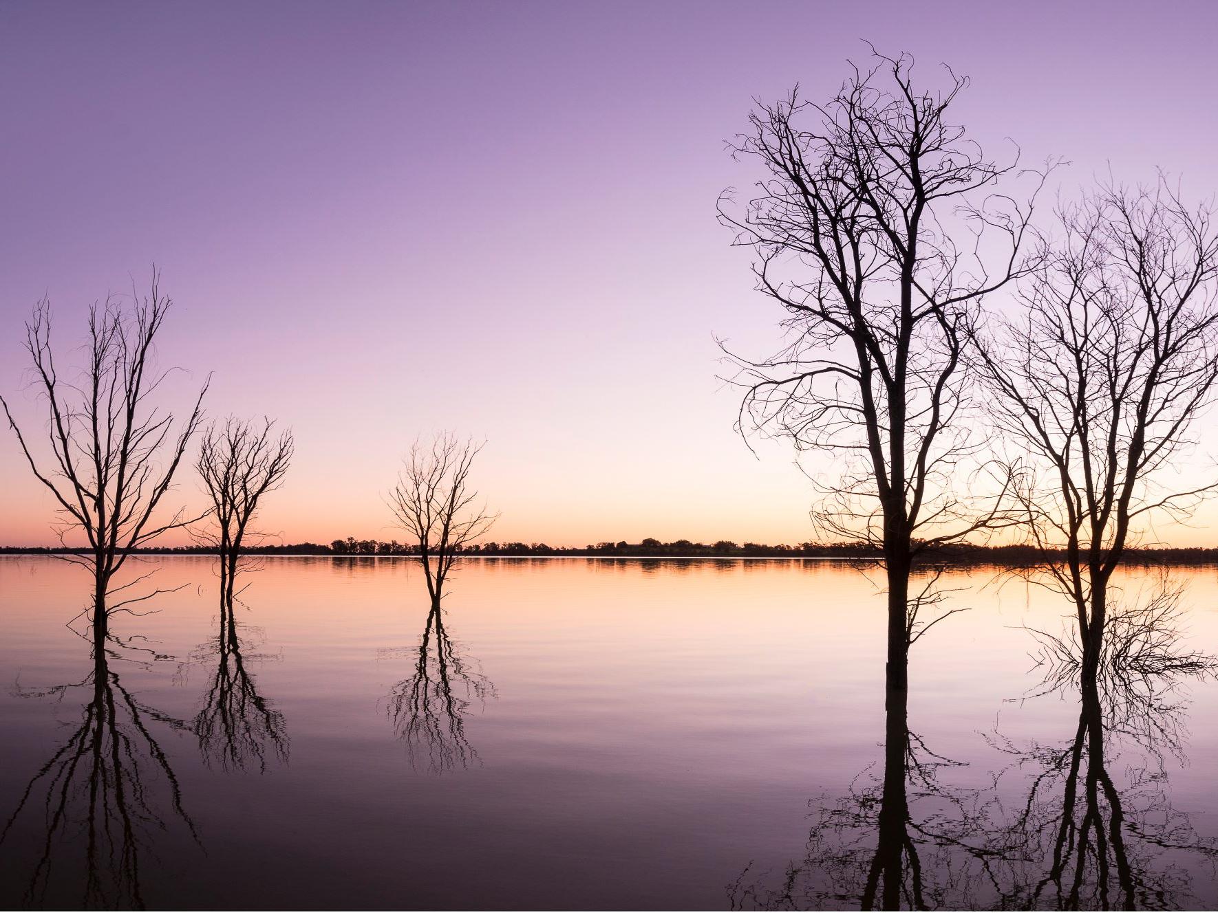 Yanga National Park | Outback NSW | Forward Travel